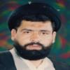 استاد سید حسن میر سید